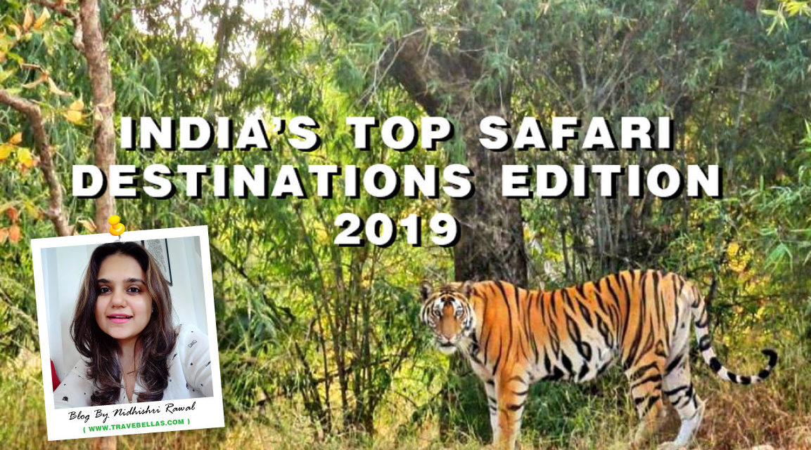 India's Top Safari Destinations – Edition 2019